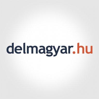 A délmagyar.hu nálunk forgatott az előszilveszteri bulinkon! (VIDEÓ)